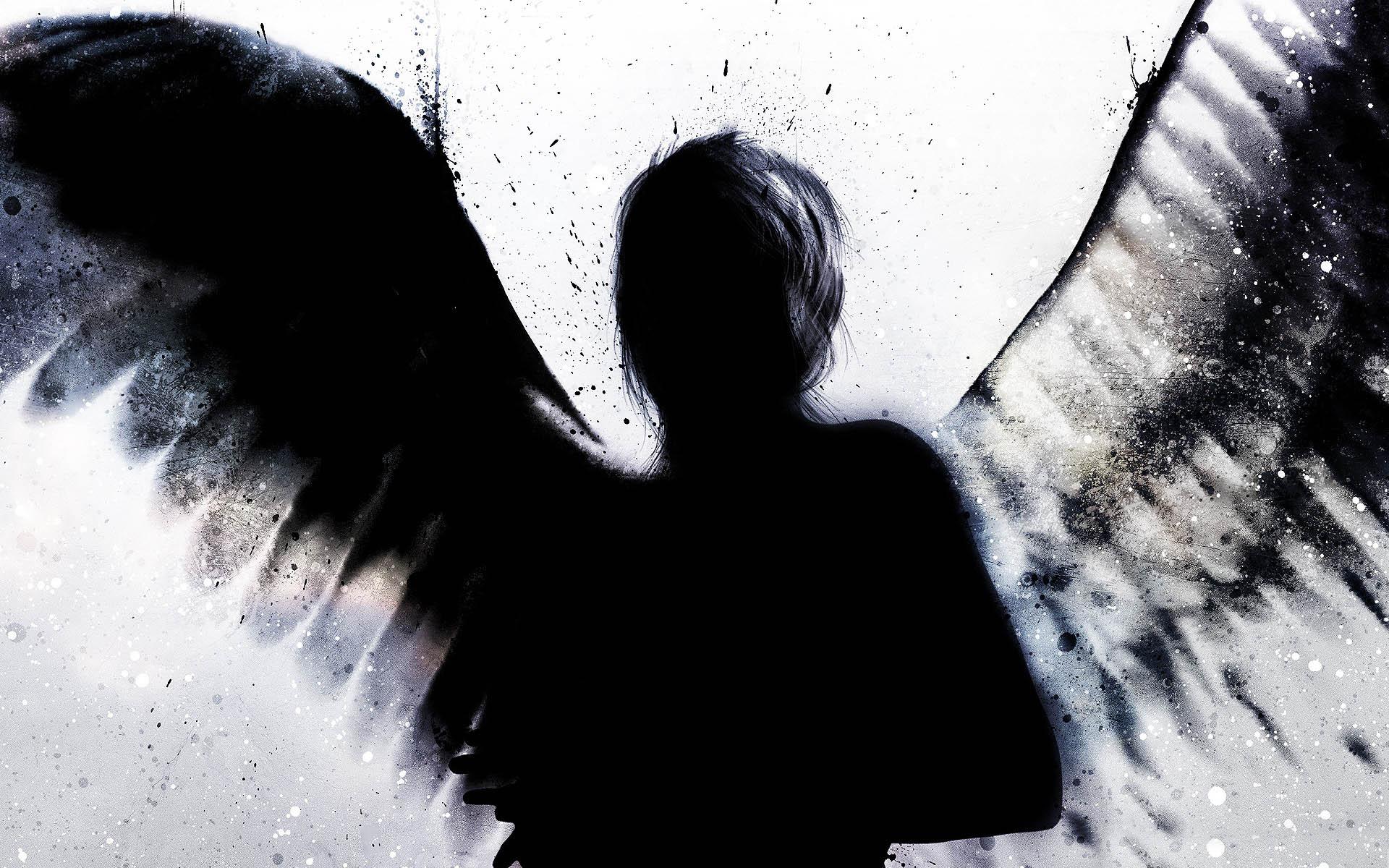 tumblr_static_angelshadowpic1